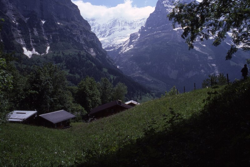 Switzerland - A photograph by Chas Woodgate
